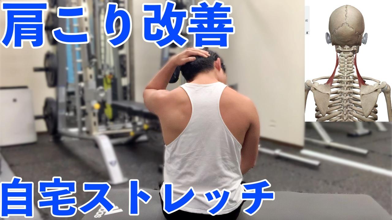 肩甲挙筋ストレッチ